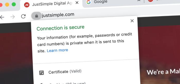 FREE SSL Web Design Malaysia